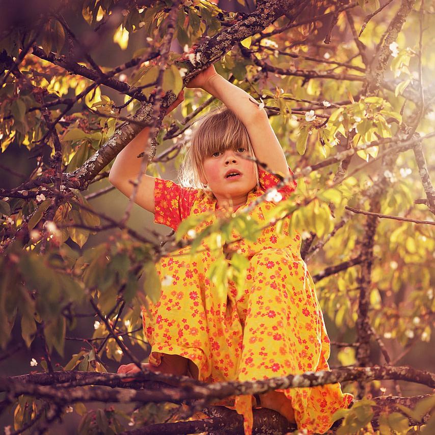 Mädchen klettert auf Baum